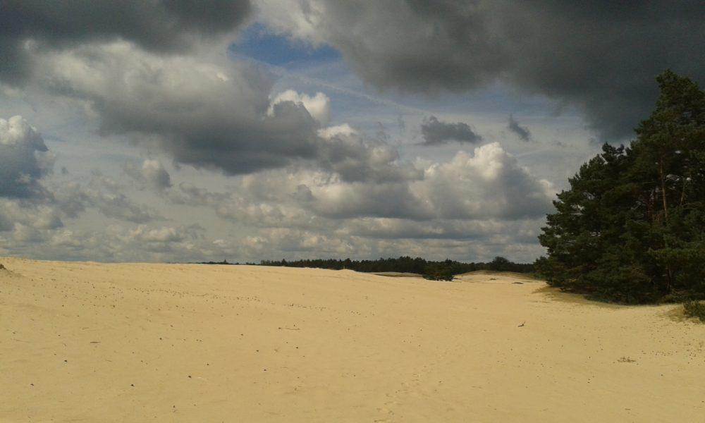Mosselse zand